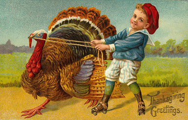 Turkeyboy