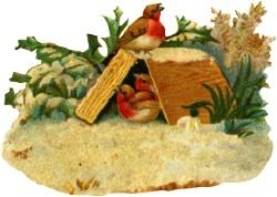 Birdsbox